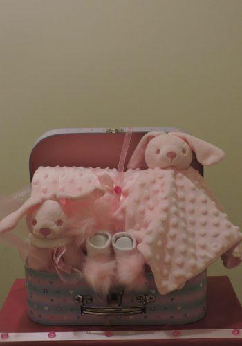 Bunnies in a Case